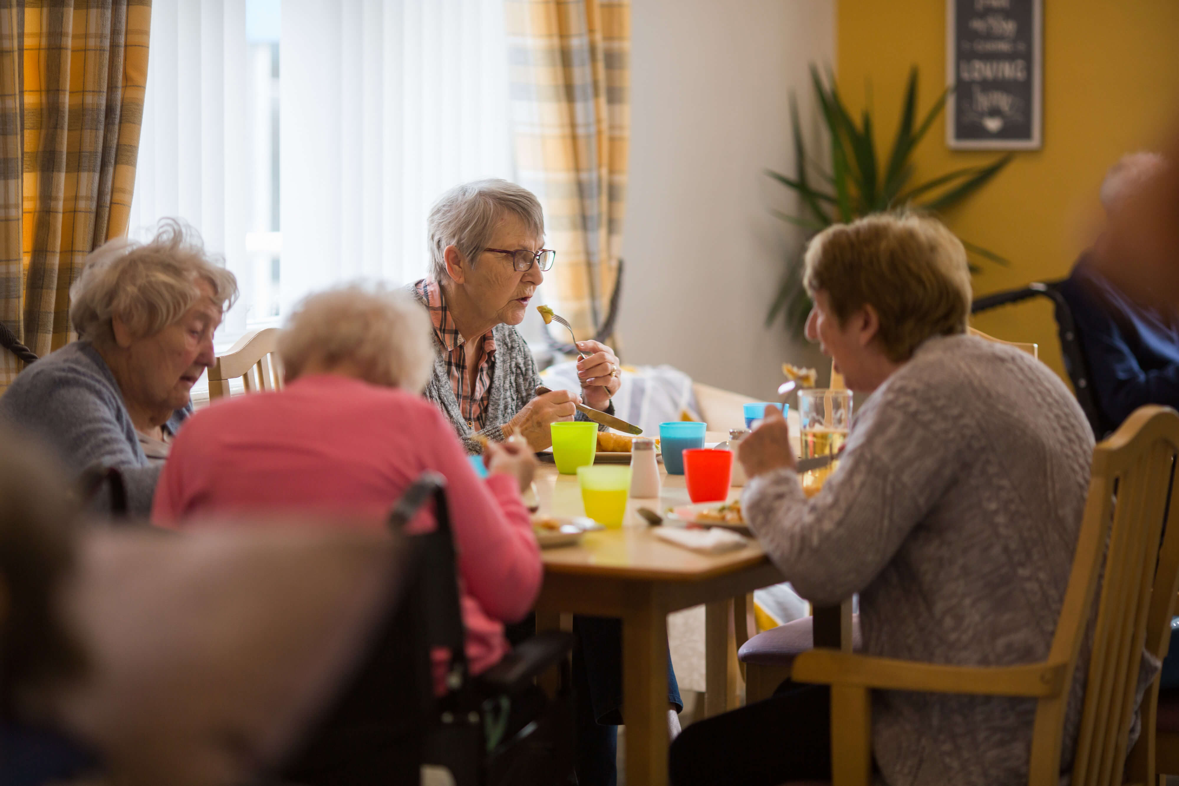 Primrose Care Home residents eating